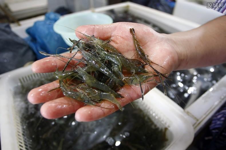 冻虾检出新冠病毒