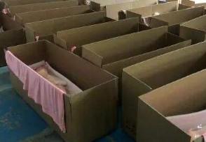 深圳成人娃娃厂疫情期订单翻番价格1千到2万元不等