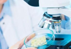大连将对19万人开展核酸检测最新规定公布