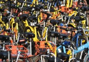 哈尔滨共享单车坟场单车客服回应将会处理