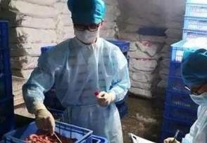 安徽进口冻虾新冠病毒检出阳性购买进口海鲜要谨慎!