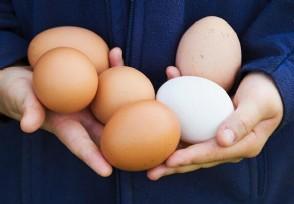 鸡蛋今日行情近期鸡蛋价格为何上涨?