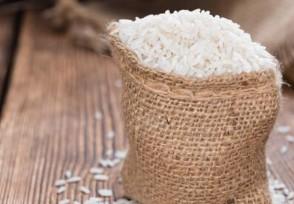 澳大利亚首遇粮荒 大米年产量近仅5.4万吨