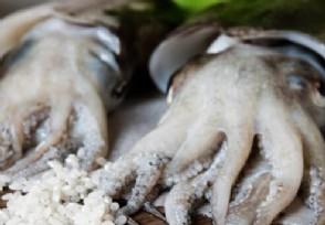 长春进口鱿鱼须外包装呈阳性近期购买海鲜产品要注意