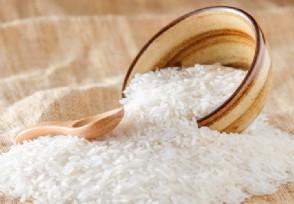 澳大利亚首遇粮荒年底超市货架恐无米可售