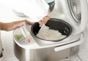 广西谈9元旅游团低价游只能吃白米饭!