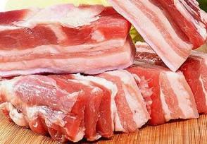 全国猪肉暴跌是真的吗请看9月25日最新行情