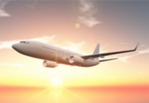 阿联酋恢复发放签证外国游客可入境旅游