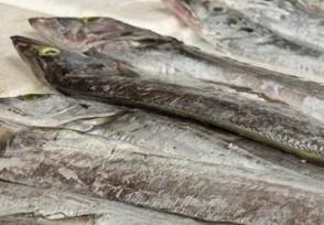 巴西进口带鱼现新冠购买进口冷冻食品要注意!