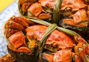 央视揭蟹卡套路 这样的螃蟹你还会选择买吗?
