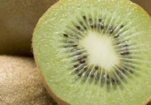 猕猴桃多少钱一斤与奇异果有什么区别?