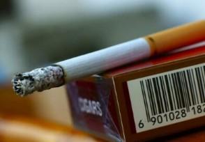 一地下黑煙廠被搗毀材料及實物案值1000萬元