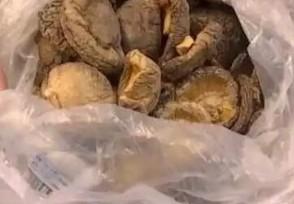买香菇煲汤漂起小虫 超市只赔偿顾客500元现金