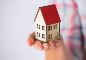 蛋殼公寓否認破產資金困難等情況正在處理中