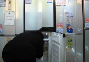 冰箱买什么牌子好 销售员推荐你买这些品牌