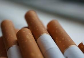 九五至尊香烟价格 揭真伪鉴别的方法
