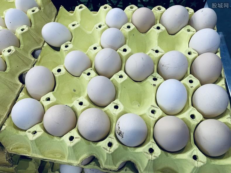 土鸡蛋行情