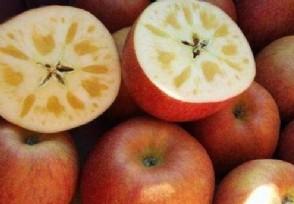 冰糖心苹果多少钱一斤春节前后价格会上涨吗?