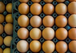 乌鸡蛋多少钱一斤与普通鸡蛋有什么区别
