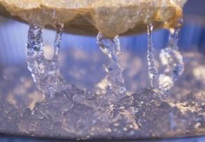 起底燕窝市场乱象 糖水含量超九成还有营养价值吗?