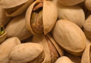 开心果一斤多少钱有哪些营养价值?