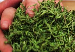 黄金茶多少钱一斤对人有哪些作用功效?
