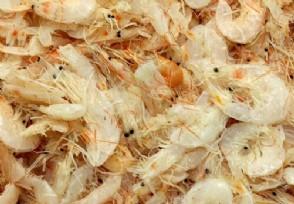 虾米多少钱一斤 不同城市价格会存在差别!