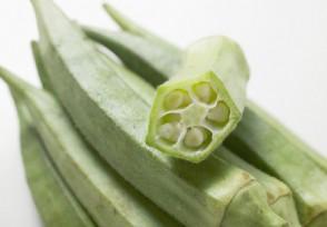 干秋葵多少钱一斤如何选购秋葵比较好