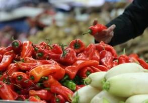 农业部谈春节菜价 大幅上涨可能性不大