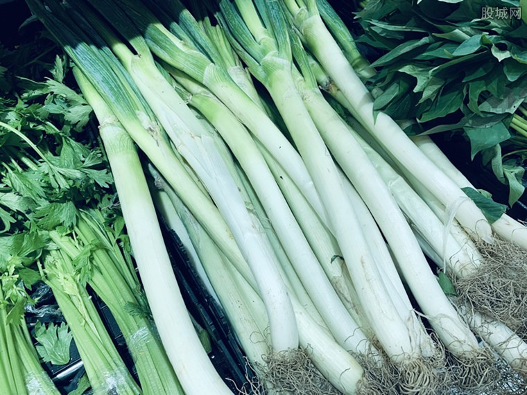 大葱尖椒忙涨价 尖椒价格涨至9元多一斤