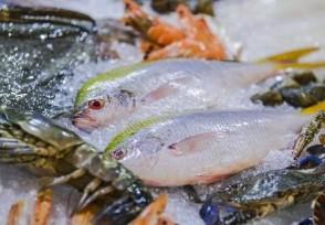 三亞推出海鮮調控價消費者可在手機上查看最新價格