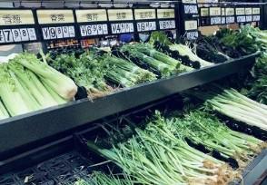 多种蔬菜价格下降节后出现持续回落态势