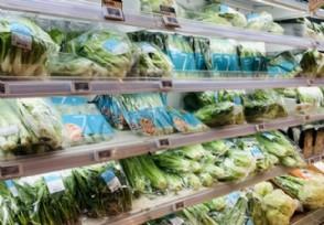 全球食品价格连续9个月上涨植物油报价涨多少?