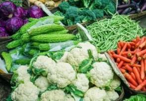 全球食品价格连续9个月上涨什么涨幅最大?