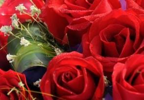 三八妇女节买花会不会很贵?2021最新行情如何