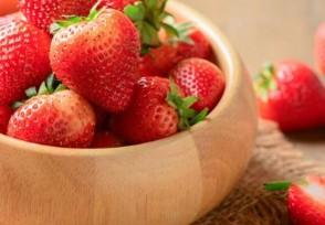 青岛多彩草莓成新宠一盒零售价大约在100元左右