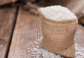 大米价格最新行情 后市米价会迎来大跌吗?