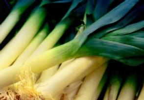 韩国大葱每公斤43元 主要农产品价格也在上涨