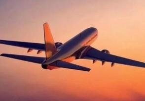 清明机票预订量大涨 预计出游人次或达1亿