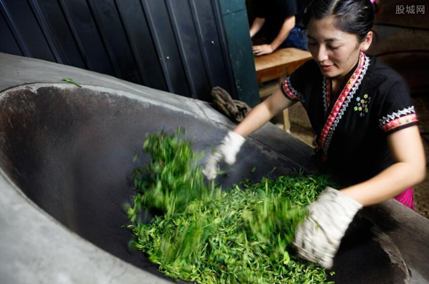 生普洱茶多少钱一斤 最新市场价格查询