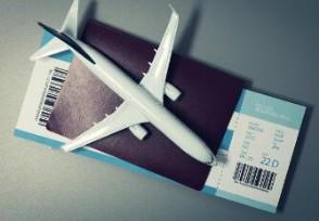 超千万人抢购98元机票盲盒 能随机飞吗?