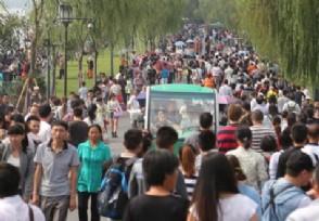云南一导游大骂游客官方是这样的回应的!