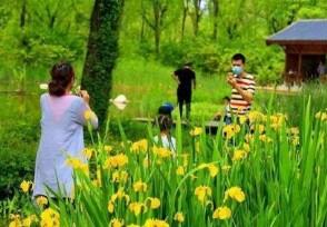五一预计出游人次 超7成人群选择跨省旅游