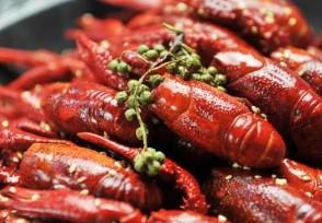 今年小龙虾价格行情怎么样?一斤要多少钱