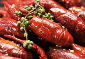 武汉小龙虾价格暴跌一斤大概要多少钱?