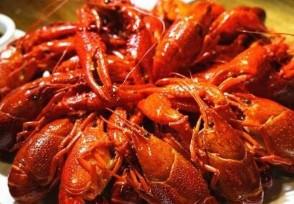武汉小龙虾价格暴跌批发价下降至8元一斤