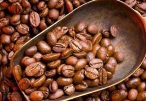全球咖啡价格或上涨受到什么因素影响?