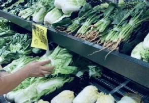 近期蔬菜�r格�楹翁��q主要的原因是什么?